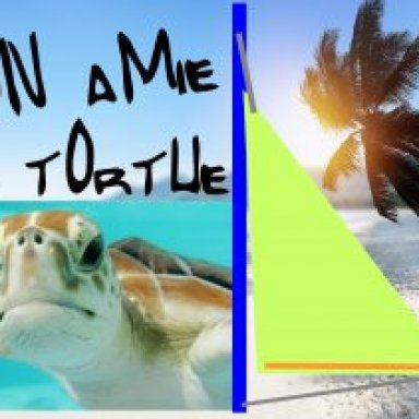 Mon amie la tortue de mer