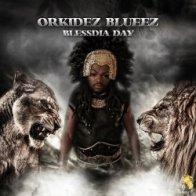 Cliquez ici pour tout savoir sur Orkidez Blueez
